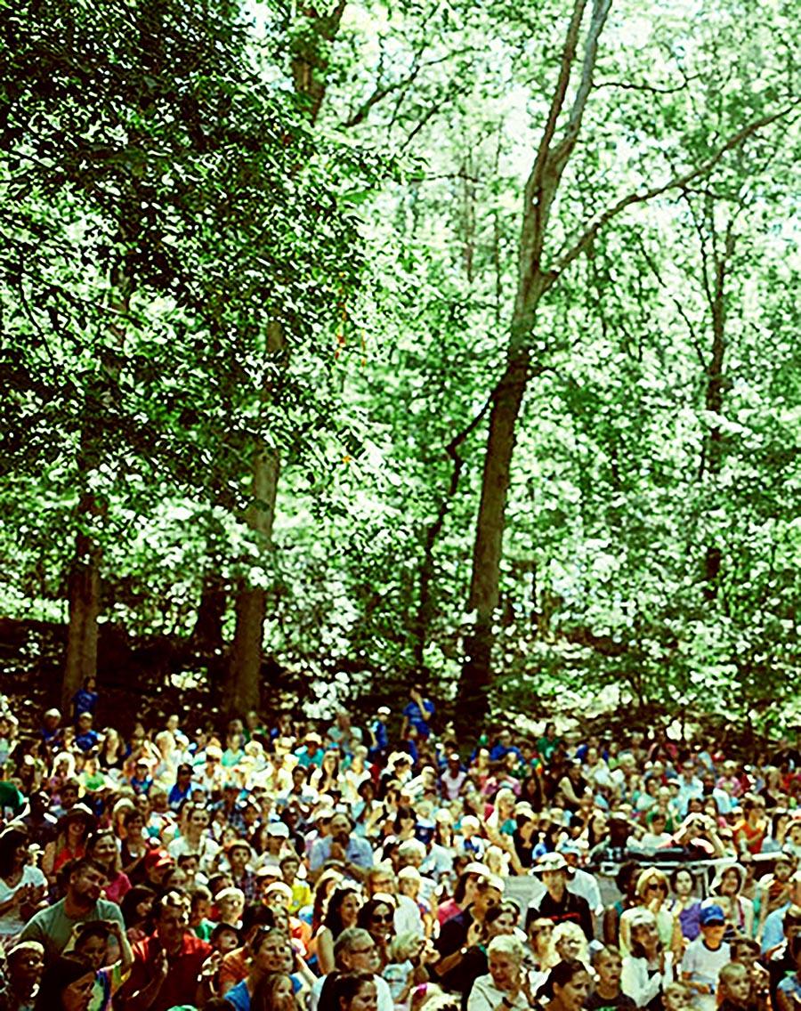 bosque público